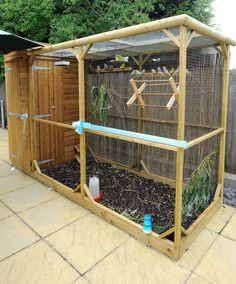 Care home unveils its new aviary | Local News and Sport in Nuneaton