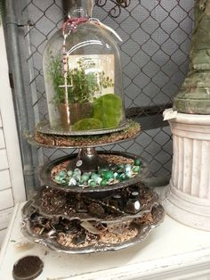 Love this cloche idea!  From: must love junk: Vacation Shopping
