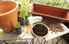 Como Cultivar Ervas Aromáticas em Casa Você pode plantar várias ervinhas no mesmo vaso, mas o hortelã ou a menta transferem o gosto para outras ervas, então essas é melhor não misturar.