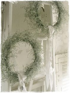 Mooskranz Source by Chippermic Christmas Flowers, Christmas Time, Christmas Wreaths, Christmas Crafts, Christmas Decorations, Xmas, Holiday Decor, Moss Wreath, Diy Wreath