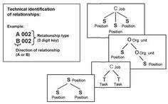 SAP HR Organizational Management Tutorial Part 2