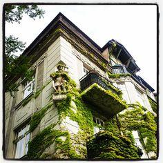. Louvre, Mansions, House Styles, Building, Travel, Instagram, Home Decor, Viajes, Decoration Home
