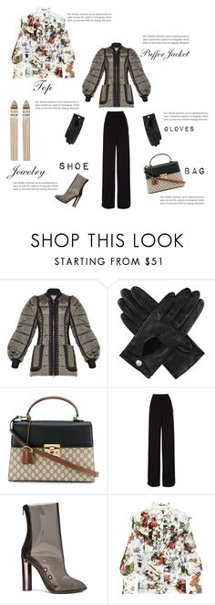 """Puffer Jacket"" by beautymanifesting ❤ liked on Polyvore featuring Hervé Léger, Dents, Gucci, Rochas, adidas and Erdem"