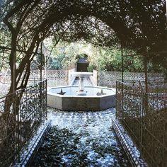 «Where have they gone ? #fes #medina #DarElJaï #gardens #abandoned #beauty #romanticism #past #glory #nostalgia #morocco»