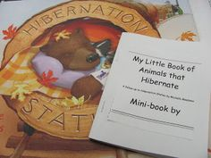 Lil Country Librarian: All Aboard the Hibernation Station