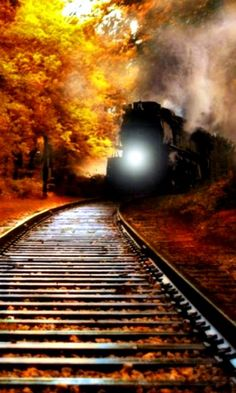 Train tracks in the fall and a steam locomotive. Locomotive Diesel, Steam Locomotive, Train Tracks, Train Rides, Motor A Vapor, Bonde, Train Pictures, Old Trains, Steam Engine
