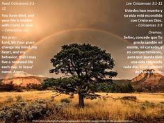 Put on the new self + Vestirse con la nueva naturaleza  Passage: https://www.biblegateway.com/passage/?search=Col+3%3A1-11&version=ESV;NVI;MSG;NCV;NLT
