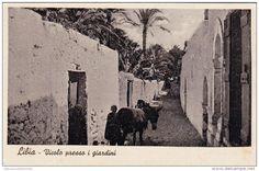"1920-Libia cartolina nuova ""Libia vicolo presso i giardini"