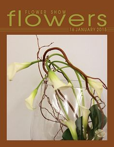 16 January 2015 - The Year in Flowers from FLOWER SHOW FLOWERS at: http://www.flowershowflowers.com/blog
