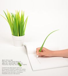 Pens that double as a plant for your desk via Design Taxi