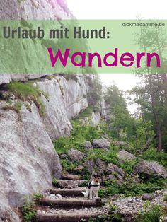 dickmadamme: Urlaub mit Hund: Wandern in Berchtesgaden