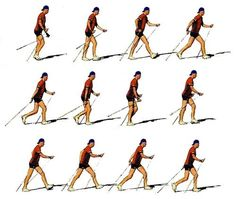 nordic walking technique