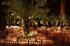 I also love hanging candles on centerpiece trees, the one in the picture looks … summer wedding trend – Outdoor Wedding Decorations 2019 Wedding Reception Backdrop, Wedding Centerpieces, Wedding Table, Wedding Decorations, Branch Centerpieces, Garden Wedding, Centerpiece Flowers, Table Decorations, Wedding Ceremony