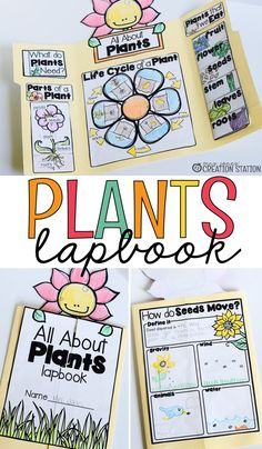 Interactive Lapbooks for the School Year Teachers, when spring is in the air have your learners complete this plant lapbook to learn how plants grow [. First Grade Science, Kindergarten Science, Science Classroom, Teaching Science, Science For Kids, Science Activities, Science Projects, About Science, Science Education