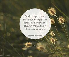 Quote by Fabrizio Caramagna #quotes #quote #aforismi #nature #natura #flowers #citazioni #naturequotes #FabrizioCaramgna #Fabrizio #Caramagna