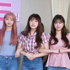 Sakura Miyawaki, Japanese Girl Group, Kim Min, Meme Faces, Kpop Girls, Yuri, Celebrities, Pretty, Fairy Girls