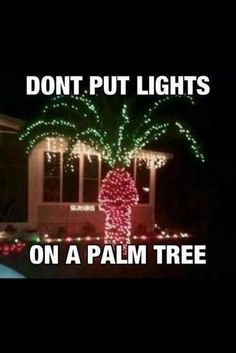 - dont put lights on palm trees