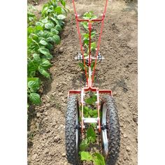 The Profi two-wheel hoe was designed for accuracy at … – Garden Ideas Farm Tools, Garden Tools, Agricultural Tools, Seed Planter, Garden Cultivator, Garden Netting, Homestead Gardens, Gardening Zones, Tractor Attachments