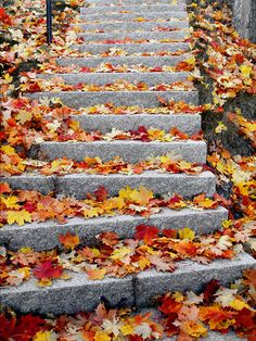 Autumn on the stairs by Liam Kearney
