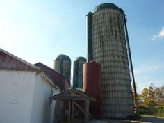 Farm country - Toronto Country Farm, Skyscraper, Toronto, Multi Story Building, Photos, Pictures, Skyscrapers, Photographs
