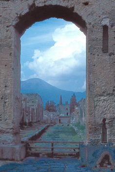 View of Pompeii with Mt Vesuvius in the background
