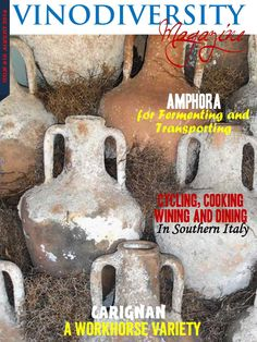 August 2014 Issue of Vinodiversity Magazine.  Stories about Amphopra, Transporting wine, carignan, cycling in Puglia, Peaches in Primitivo
