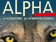 Alpha - Parc et centre du loup au boréon / Mercantour - Saint Martin Vésubie - 06 Alpes Maritimes