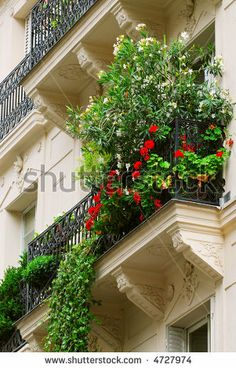 Flowers on historic building in Paris, France