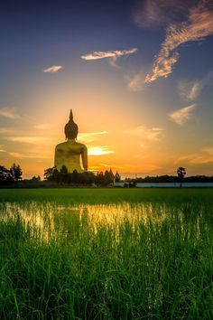 """""""Ah, kindness. What a simple way to tell another struggling soul that there is love to be found in this world."""" ~ Unknown * Great Buddha, Wat Muang, Thailand <3 lis"""