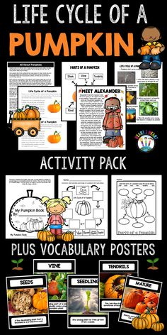Life Cycle of a Pumpkin - This unit includes everything you need to teach all about the Pumpkin Life Cycle with diagrams, charts, and the life cycle with real-life photographs.