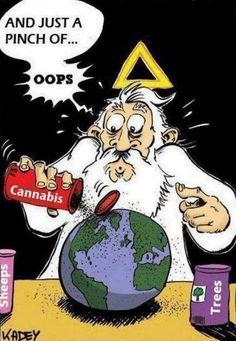 #cannabis #humor #nirvanashop and visit us at www.nirvanashop.com and follow us on facebook https://www.facebook.com/nirvana.seedbank/