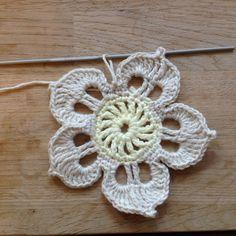 Suvi's Crochet: Plumeria