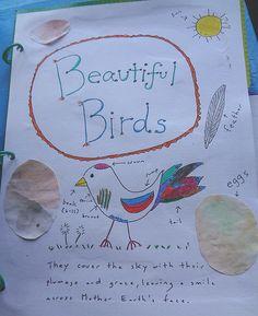 """DIY """"Beautiful Birds"""" lapbook with printables."""