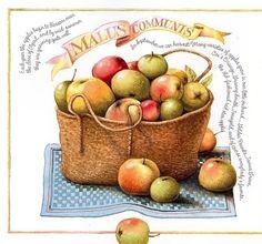 New Fruit Illustration Marjolein Bastin 21 Ideas Marjolein Bastin, Fruit Illustration, Nature Artists, New Fruit, Dutch Artists, Nature Paintings, Soft Colors, Clipart, Retro