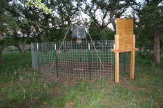 Steel Cage Hog Trap Traps Hog Trap Hog Hunting Snare
