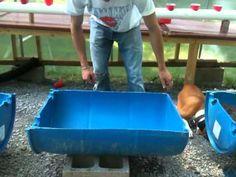 Building a half barrel garden bed