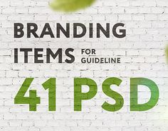 "Check out new work on my @Behance portfolio: ""Branding Items for guidelines 