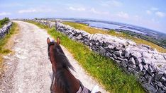 Horse riding vacations with Cooper's Hill Equine on the Wild Atlantic Way,West of Ireland. We organise hunting, trekking in the Burren, & beach riding. Time Travel, Us Travel, Riding Holiday, Horse Ears, Horse Riding, Trekking, Coastal, Hunting, Horses
