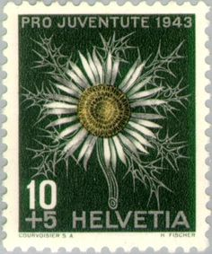 Znaczek: Silver Thistle (Carlina acaulis) (Szwajcaria) (Pro Juventute: Flowers, Emanuel von Fellenberg) Mi:CH 425,Sn:CH B127,Yt:CH 389,AFA:CH 427,Zum:CH J106