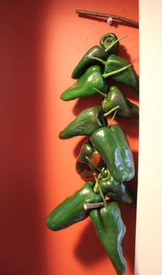 Drying Chile Peppers 101 (Poblano, Chipotle, etc.) - HOMEGROWN