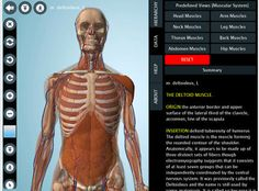 7 Wonderful iPad Apps to Learn about Human Body in 3D ~ Educational Technology and Mobile Learning