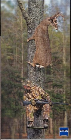 #deer hunting - Click image to find more Outdoors Pinterest pins