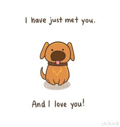 I have just met you and I love you! - Dug - UP