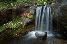 Beau Zen Gardens   Calming Peace And Tranquility