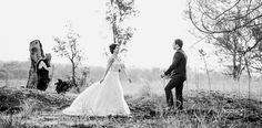 N&K (36) Coming Soon, Comebacks, About Me Blog, Weddings, Wedding Dresses, Fashion, Bride Dresses, Moda, Bodas