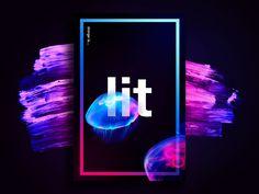 design is… lit by Andre Guerra for Design Sprinkles
