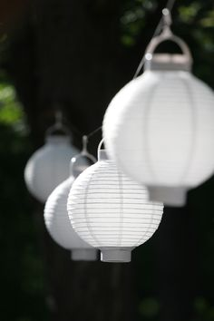 Light up the night with fun paper lanterns strung around the outdoor #wedding reception.