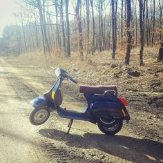 My beautiful Vespa Pk 50 xl piaggio scooter in the forest