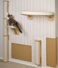 Ideas for scratching pole and perch