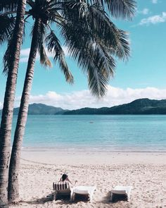 Hamo is one of the best Island resorts in Australia! Cocktails all round! 😊⛵🍹🥥🌞 Trip To Maui, Beach Trip, Places To Travel, Places To Go, Travel Destinations, The Whitsundays, Beach Aesthetic, Summer Aesthetic, Hamilton Island